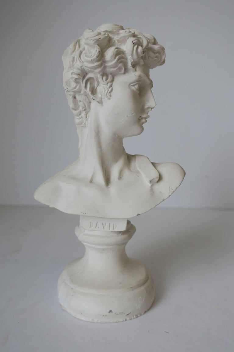 Cast White Plaster Classic Roman Style Bust Sculpture of the David For Sale