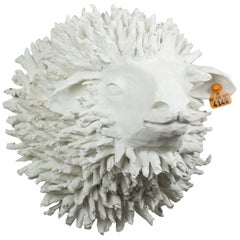 White Sheep Trophy, Picot FR4149