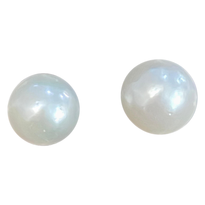 White South Sea Pearl Stud Earrings 14 Karat Yellow Gold