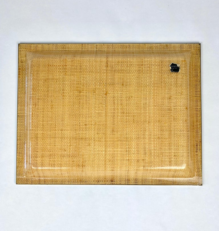 Wicker Lucite Serving Tray Metal Frame by Janetti, Italy, 1970s For Sale 2