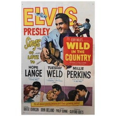 Wild in the Country Elvis Presley 1961 Original Theatrical Poster
