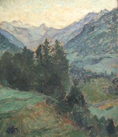 View into Stubai - Valley landscape