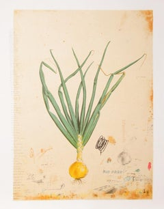 How to Grow an Onion, Lithograph by Will Mentor