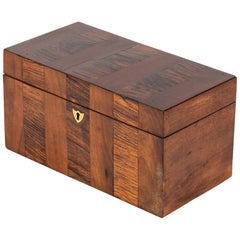 William IV Tea Caddy Box from Early 19th Century