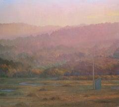 Blue Shed no. 1 - western landscape realism