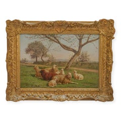 Family of sheeps resting under Apple Blossom Tree