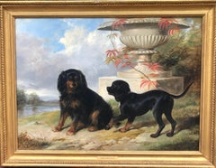 Beautiful C19th Oil Painting of Lord Methuen's Spaniels Gipsy & Fairy