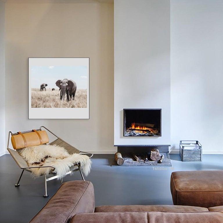 Elephants (Kenya) - 18 x 24 in.  - Photograph by William Chua