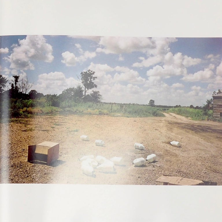 American William Eggleston's Guide, First Edition, 1976 For Sale