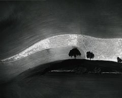 Two Trees on Hill with Shadows, Paso Robles, Black and White Landscape,