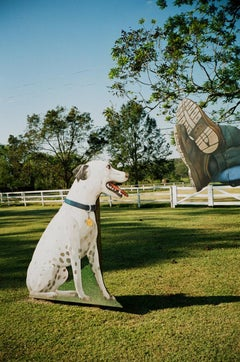 Dog Cut Out, Cocodrie, LA