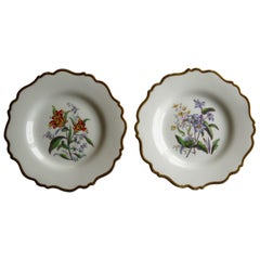 William IVth John Ridgway Pair of Porcelain Plates Hand Painted Botanical