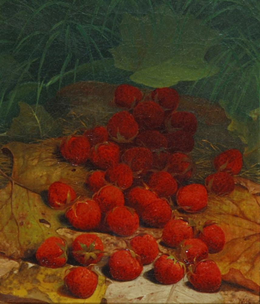 Strawberries Strewn on a Forest Floor
