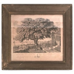 William Penn Historical Print, The Great Elm Tree of Shackamaxon in Period Frame