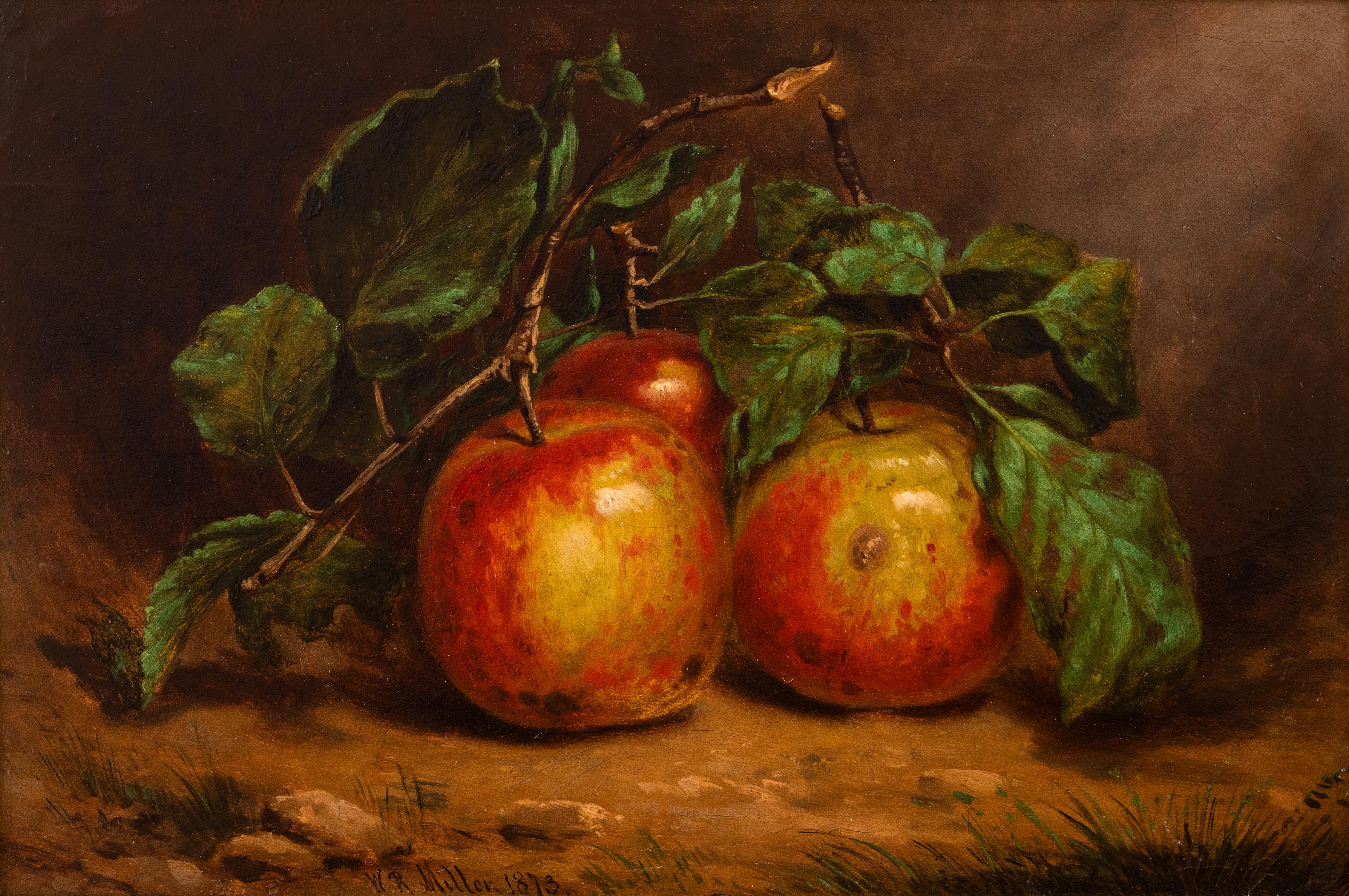 Study of Apples on a Bough