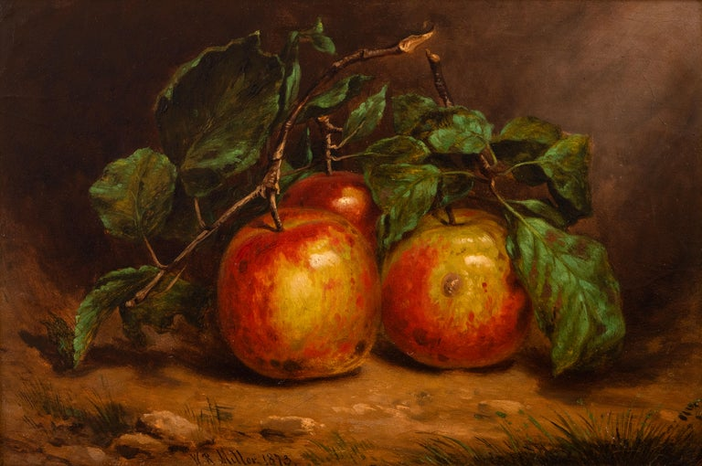 William Rickarby Miller Still-Life Painting - Study of Apples on a Bough