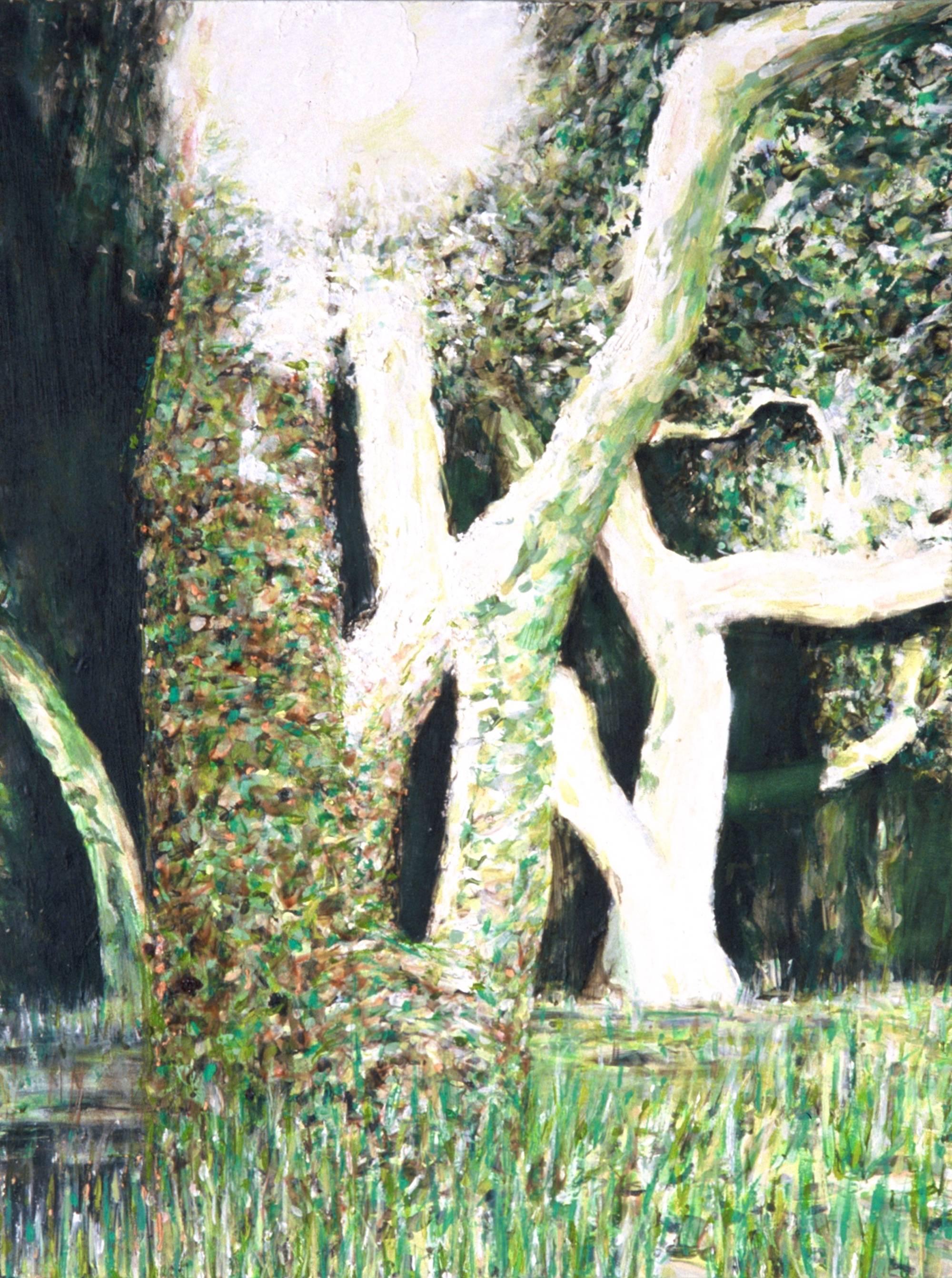Daphne / oil on canvas