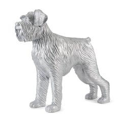 Cloned silver dog