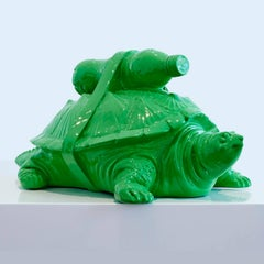 Cloned Turtle with pet bottle.