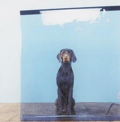 Lakeview, by William Wegman