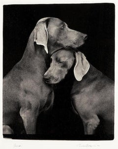 William Wegman 'Friends' Signed, Limited Edition Archival Print Photograph