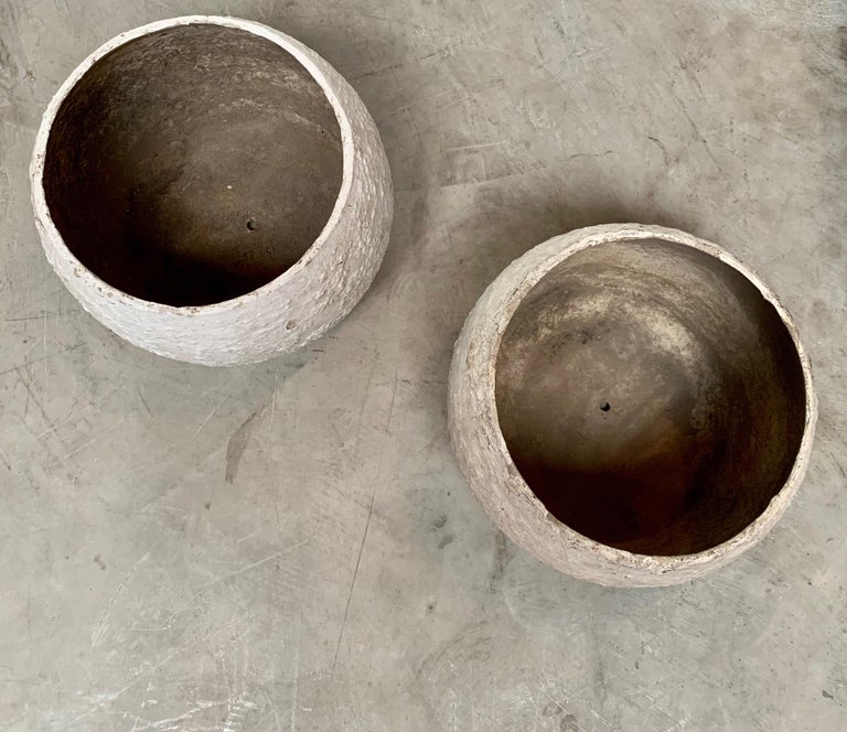 Mid-20th Century Willy Guhl Concrete Vases For Sale