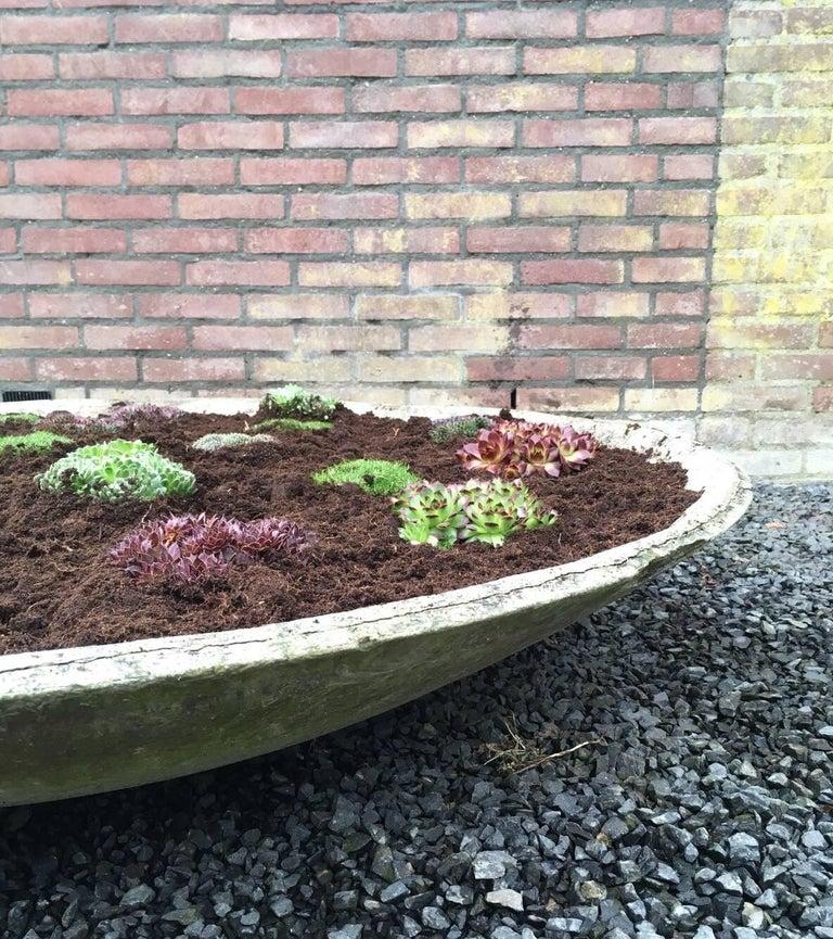 Willy Guhl for Eternit, Enormous Midcentury Saucer Planter, Garden Element For Sale 4
