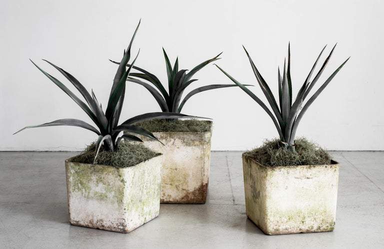 Fantastic cement planter by Willy Guhl. Square shape. Priced individually - 2 available  14 7/8 X 14 7/8 X 12 1/2H