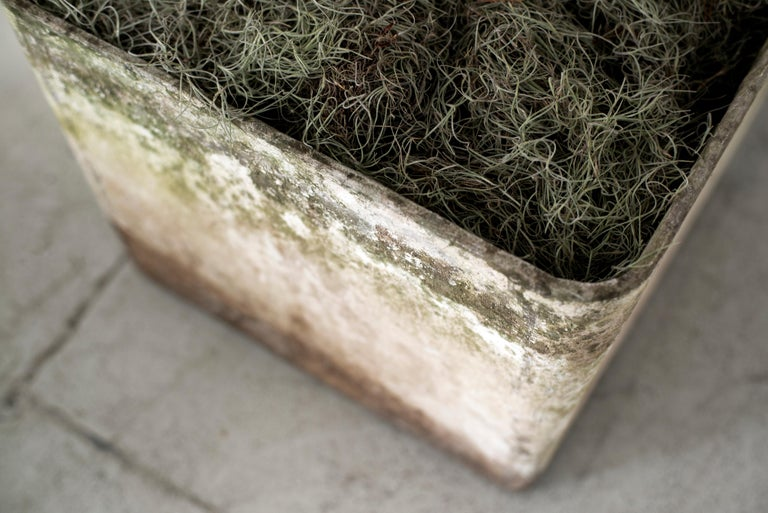 Cement Willy Guhl Planter For Sale