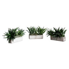 Willy Guhl Planters