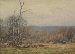 Early April Mist, Old Lyme, Connecticut