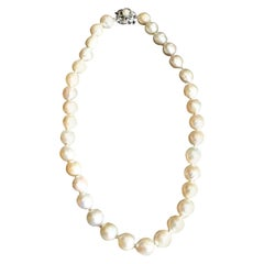 Women's Large Cultured Pearl Choker Necklace with a 14-Karat White Gold Clasp
