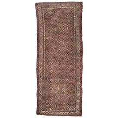 Wonderful Antique Long Kurdish Malayer Rug