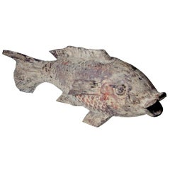 Wooden Mudfish