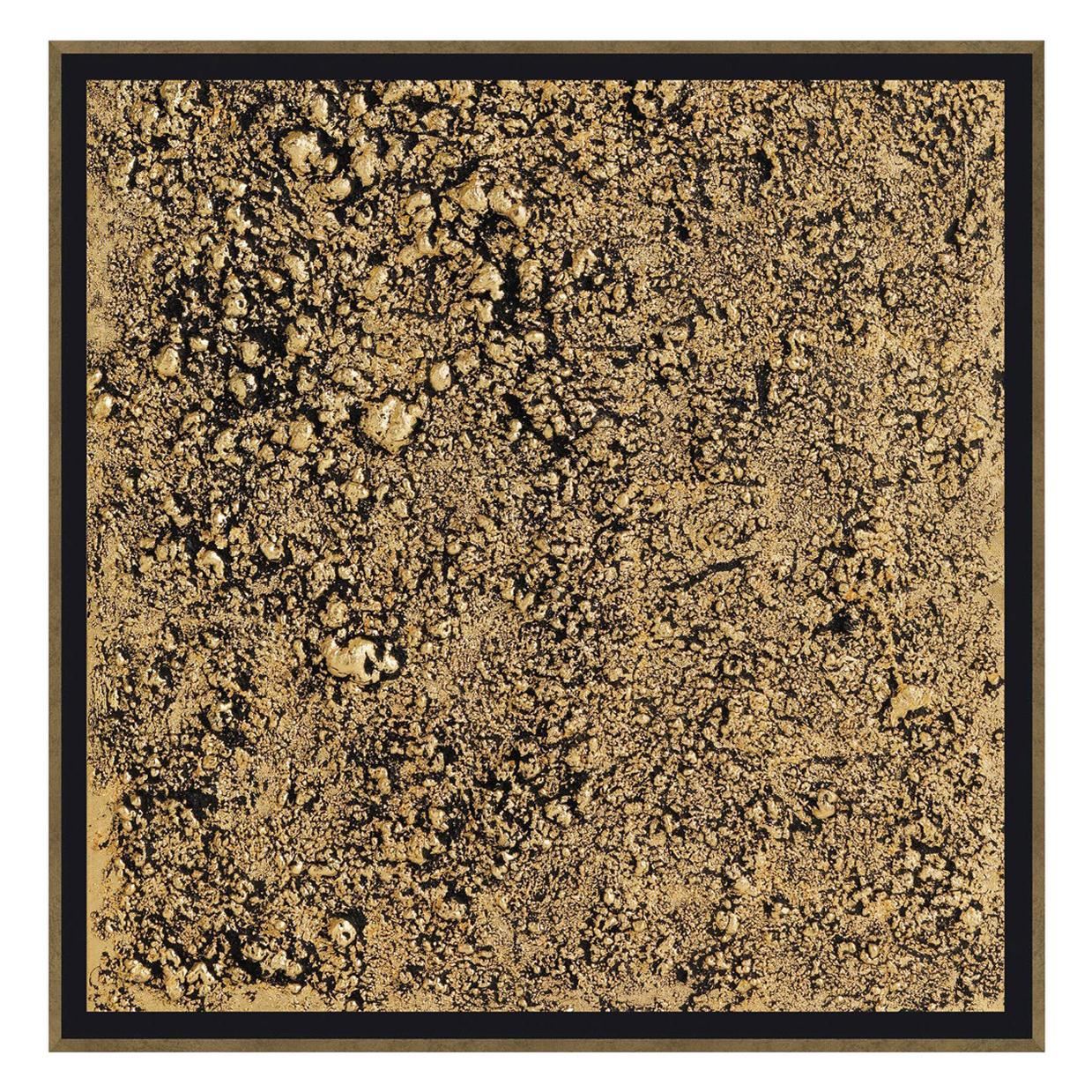 Wool Acrylic Painting with Wooden Frame by Roberto Cavalli Home Interiors