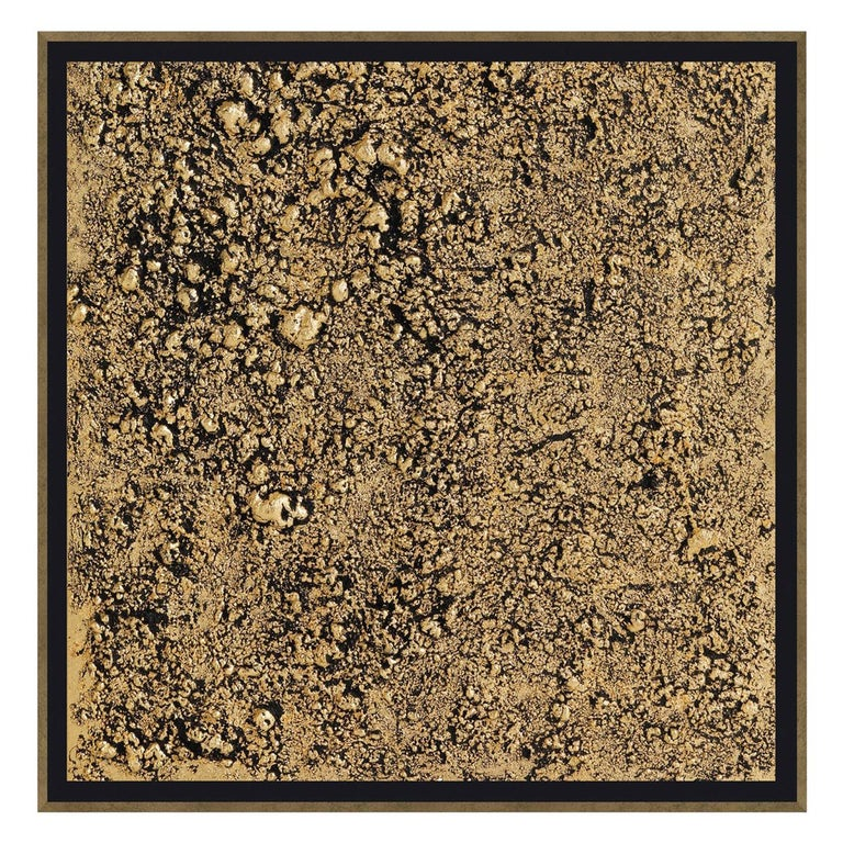 Wool Acrylic Painting with Wooden Frame by Roberto Cavalli Home Interiors For Sale