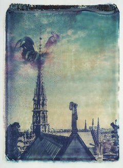 Notre Dame 1 - Contemporary, 21st Century, Polaroid, Paris, Icons