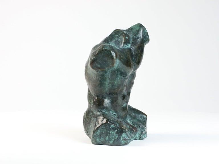 Belenos III,  Bronze Sculpture, Nude Male Torso For Sale 2