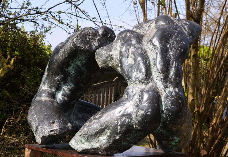 Wrestlers IV, Large-Scale Nude Male Wrestlers Bronze Sculpture For Sale 2