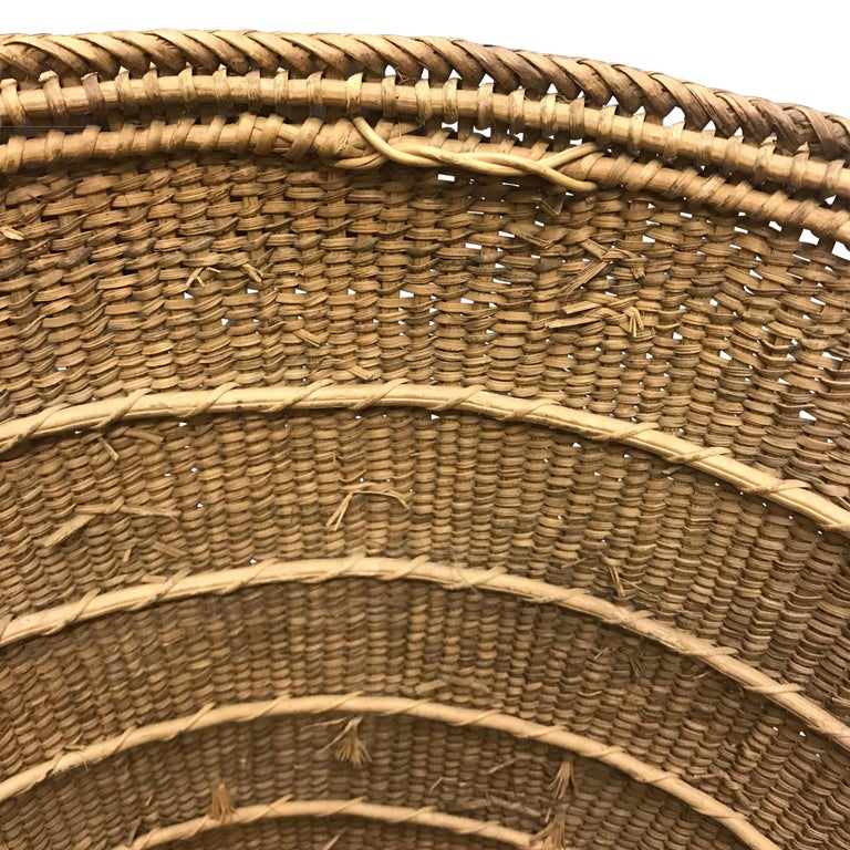 Yanomami Gathering Basket In Good Condition For Sale In Chicago, IL