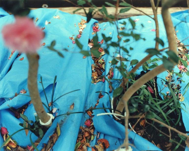 Yoko Ikeda Color Photograph - Takamatsu City, Kagawa Prefecture (1241-08)