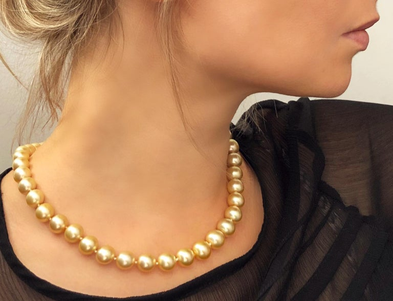 Contemporary Yoko London Golden South Sea Classic Row Necklace with 18K Yellow Gold Clasp For Sale