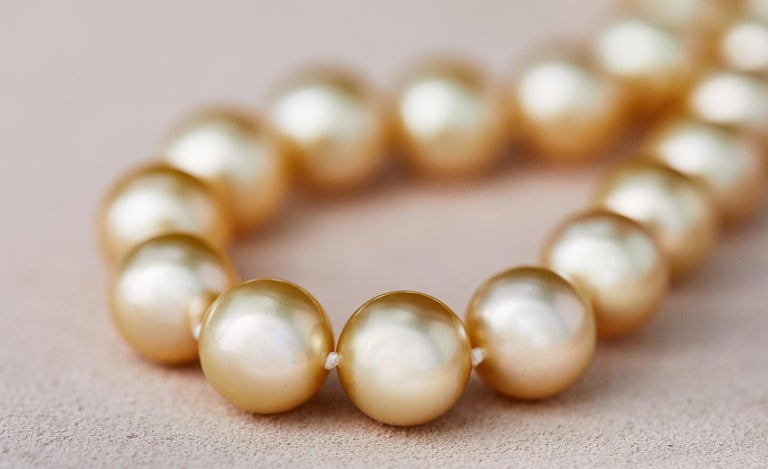 Women's Yoko London Golden South Sea Classic Row Necklace with 18K Yellow Gold Clasp For Sale