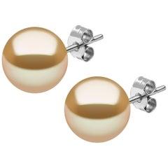 Yoko London Golden South Sea Pearl Stud Earring in 18 Karat White Gold