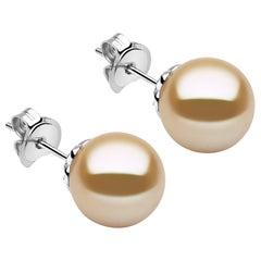 Yoko London Golden South Sea Pearl Stud Earrings Set in 18 Karat White Gold