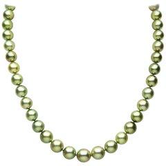 Yoko London Pistachio-Coloured Tahitian Pearl Classic Necklace in 18 Karat Gold