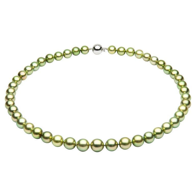 Yoko London Pistachio-Colored Tahitian Pearl Classic Necklace in 18 Karat Gold For Sale