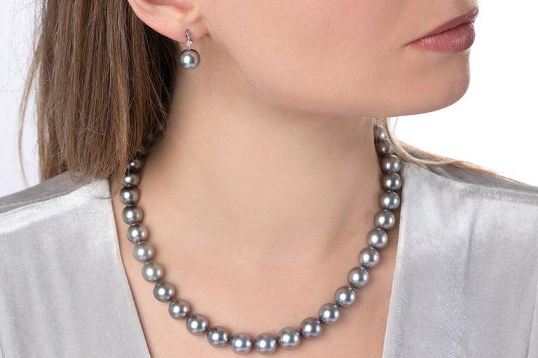 Contemporary Yoko London Tahitian Pearl and Diamond Earrings set in 18 Karat White Gold For Sale