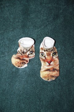 colors 044 – Yoshinori Mizutani, Colour, Street Photography, Cats, Socks
