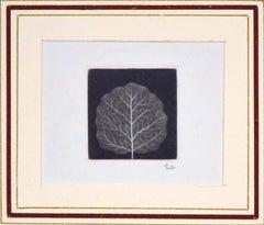 Leaf - Original Mezzotint by Yozo Hamaguchi - 1967